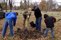 Celebrate Arbor Day in Jamestown Oct 1