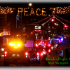 """Parade of Lights"" Online & on TV"
