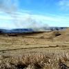 Crews battle grass fires