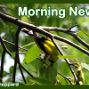 Wayne Byers Show –  Morning – May 21