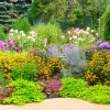 AAUW Garden Tour Weds July 18