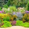 AAUW Garden Tour Weds July 18