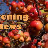 Wayne Byers Show – Evening – Oct 2