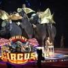 Shrine Circus Tues April 9 at Civic Center