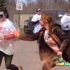 RFL Color Fun Run draws large crowd