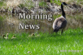 Wayne Byers Show – Morning – Sept 17