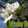Wayne Byers Show – Evening – Aug 8
