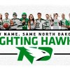 Petition to change new Fighting Hawks logo