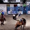 High school, Jr. High rodeo Sept. 16-17