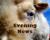 Wayne Byers Show – Evening – Jul 18