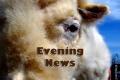 Wayne Byers Show – Evening – Feb 26