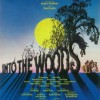 """JHS Theater production """"Into The Woods,"""" Jun 29, 30"""