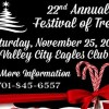 Valley City's Festival of Trees  Nov 25