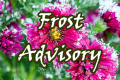 Frost Advisory Mon  thru 9am Monday