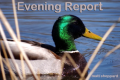Wayne Byers Show – Evening – Sept. 15