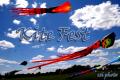 Kite Fest 2019 at Meidinger Park – Photos