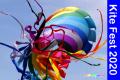 Kite Festival at Meidinger Park Photos