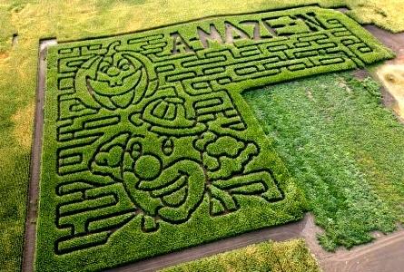 A-MAZE-N Pumpkin Patch & Corn Maze Thru Oct 10