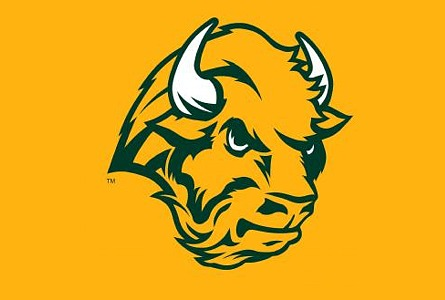 Bison logo - photo#26