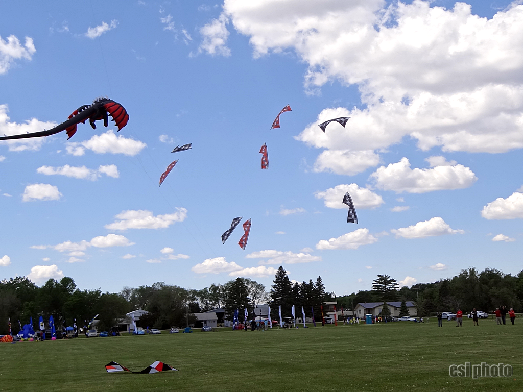 Kite Fest 2019 - More CSi Photos at Facebook Like & Share