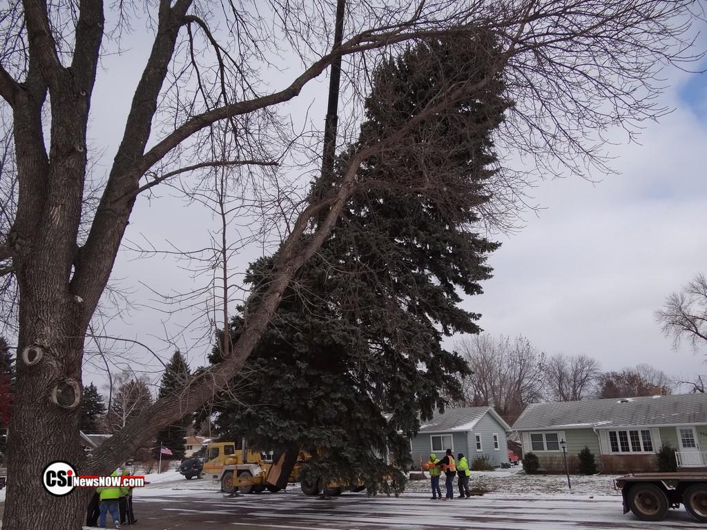 Civic Center Christmas Tree 2018 NW Jmst   CSi photo