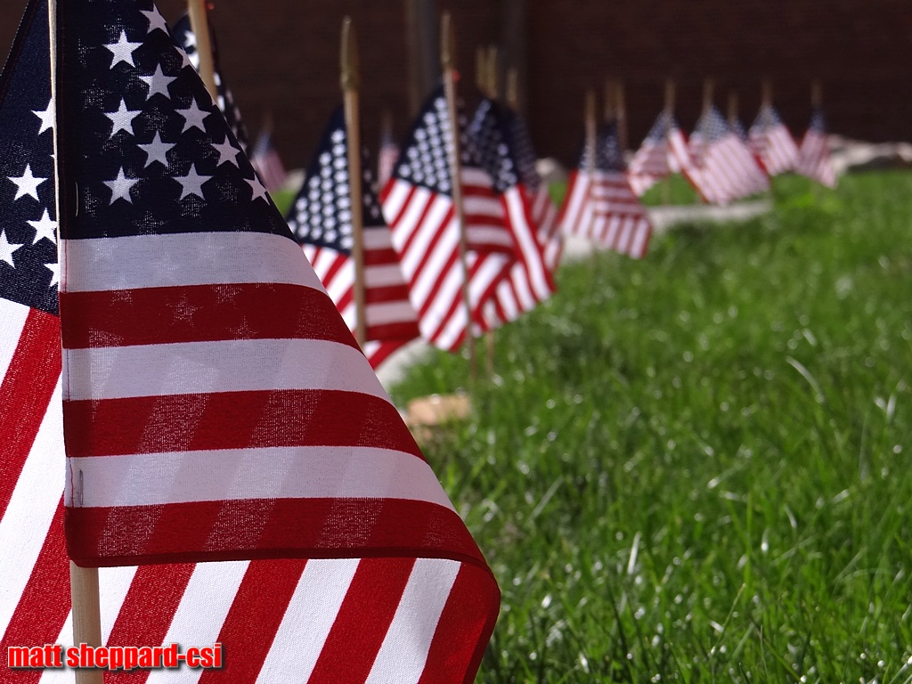 Flags lined the sidewalks of the Arts Park in downtown Jamestown.