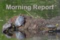 Wayne Byers Show – Morning – Oct. 13